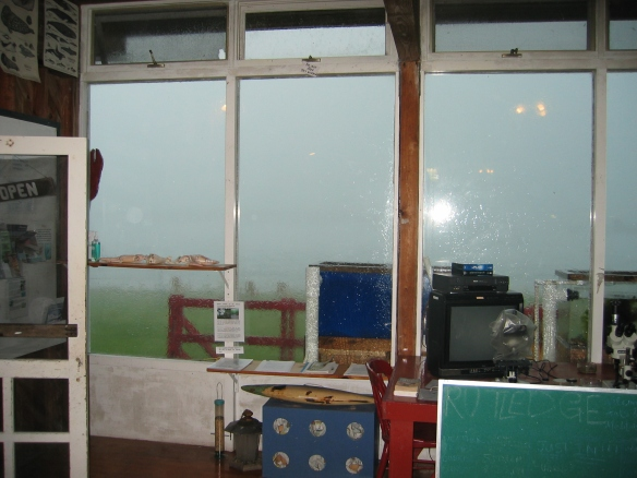A view of the rain streaking the lab.